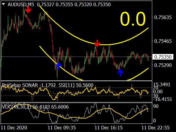 ProSetup VOC Indicator & System