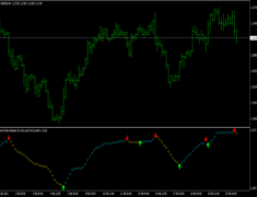 SFI Indicator Entry and Exit