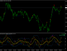 Traders Dynamic Index PRO Indicator