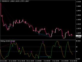 Wildhog NRP Divergence Indicator